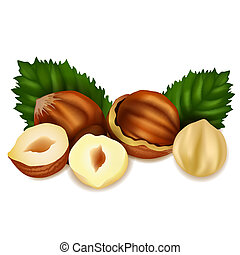 Hazelnuts with leaves.