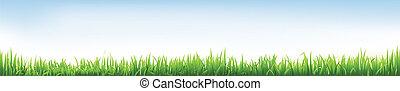 Header With Grass, Vector Illustration