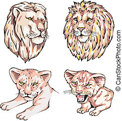 heads of lions and lion cubs
