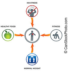 Healthy lifestyle Healthy food, fitness, normal weight and no stress leads to healthy heart and life