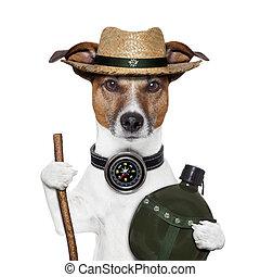 hike compass hat dog canteen bottle