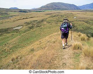 Hiker walking the hills of New Zealand