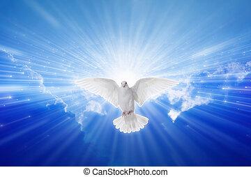 Holy Spirit came down like dove, holy spirit dove flies in blue sky, bright light shines from heaven, christian symbol, gospel story