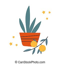 Home flowerpot with a plant and tangerine.