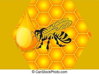 honey, bee and honeycomb