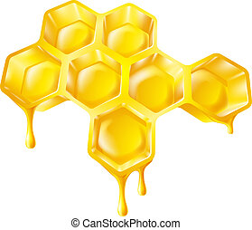 Illustration of bee's honeycomb with honey dripping off it