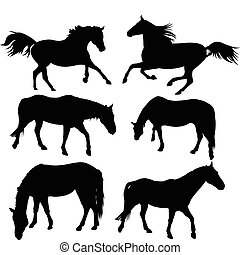 Horse Silhouette Collection