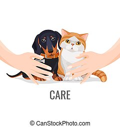 Human hands take care about cute pets dog and cat