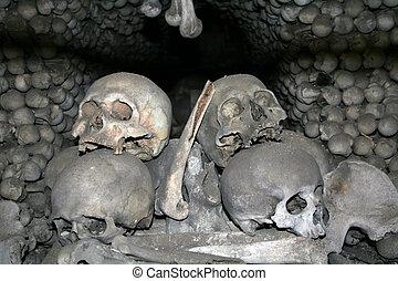 Bones of victims of black death
