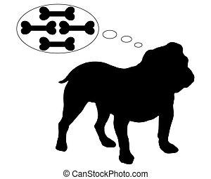 Hungry english bulldog dreams of many bones