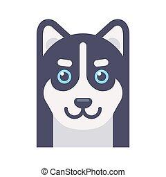 Husky dog head