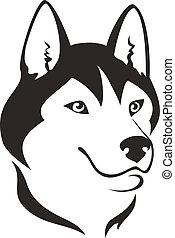 Husky dog head, vector illustration
