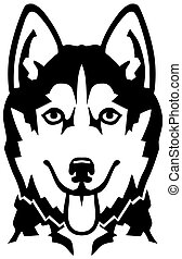 Husky head black and white