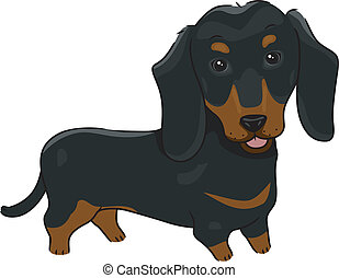 Illustration Featuring a Cute and Friendly Dachshund