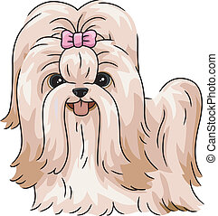 Illustration Featuring a Shih Tzu