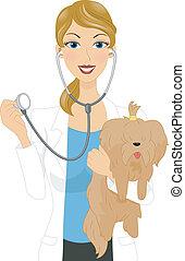 Illustration of a Veterinarian Examining a Dog