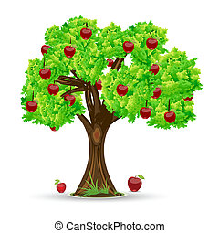illustration of apple tree on white background