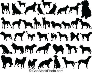 illustration of big collection of dogs - vector