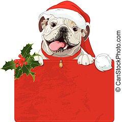Christmas English bulldog