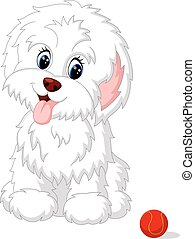illustration of Cute white lap-dog puppy posing