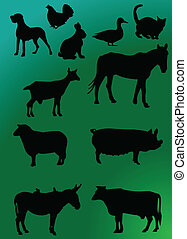 domestics animal with background