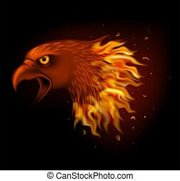 Fire eagle head isolated on black background