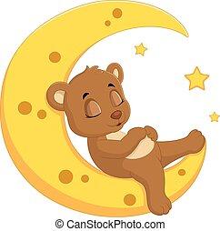 The bear sleep on the moon