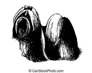 Image of Shih tzu , hand drawn vector.