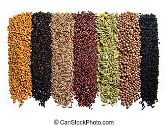 Indian spices. 8 pcs. Isolated on white. From South India.