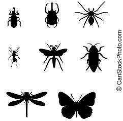 Insect set 01