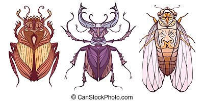 Insect set in color with a tribal pattern. Doodle scarab, cicada and beetle deer separate from the background. Vector element for your creativity