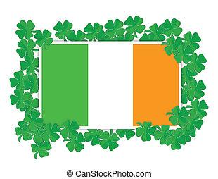 Irish flag around Shamrocks illustration design over white