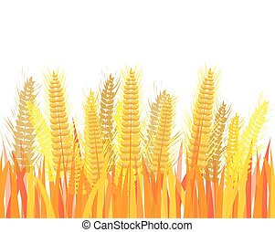 isolated Barley Rice on white background vector design