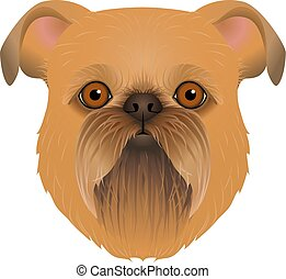 Isolated colorful head and face of brussels, belgian griffon on white background. Color flat cartoon breed dog portrait.