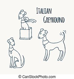 Italian Greyhound Cartoon Dog Set.