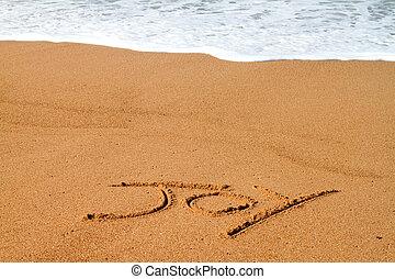 joy written on beach