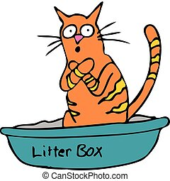 An image of a cat embarassed using the litterbox.