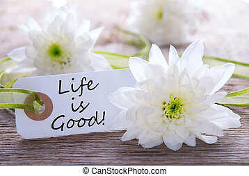 Label with the Text Life is Good an Wood with White Blossoms