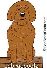 Labradoodle cartoon dog icon
