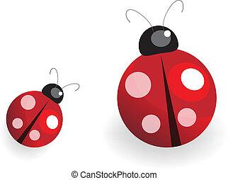 illustration of a lady bug over white background