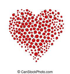 ladybugs forming heart shape on white background