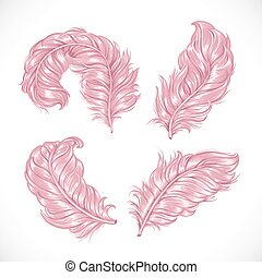 Large pink fluffy lush ostrich feathers isolated on white background