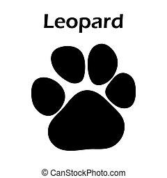 Leopard Footprint