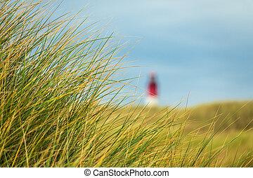 Lighthouse in Wittduen on the island Amrum, Germany