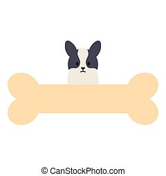 little dog adorable with bone