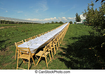 Outdoor setting for a fancy formal dinner.