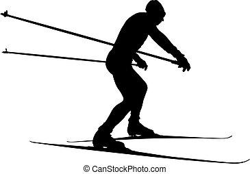 male athlete skier