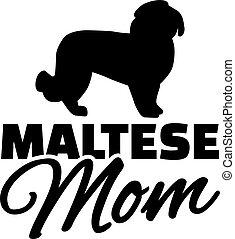 Maltese dog Mom