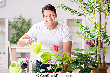Man taking care of plants at home