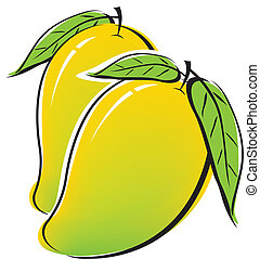 Mango design on white background